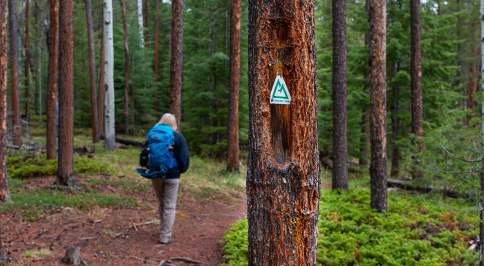 Why do people hike the Colorado Trail