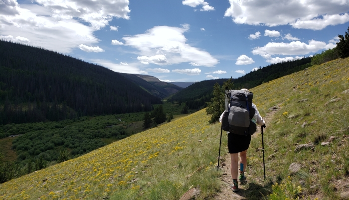 Colorado Trail Segment 19